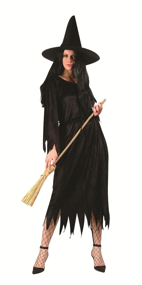 Classic Witch Adult Womens Costume