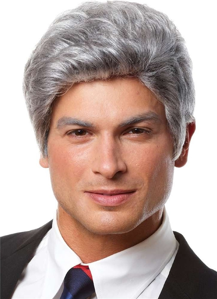Mr. President Grey Adult Wig