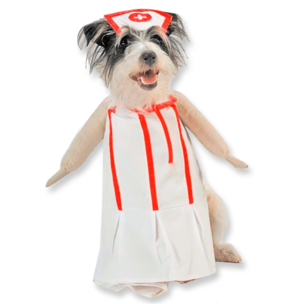 Nurse Pet Costume