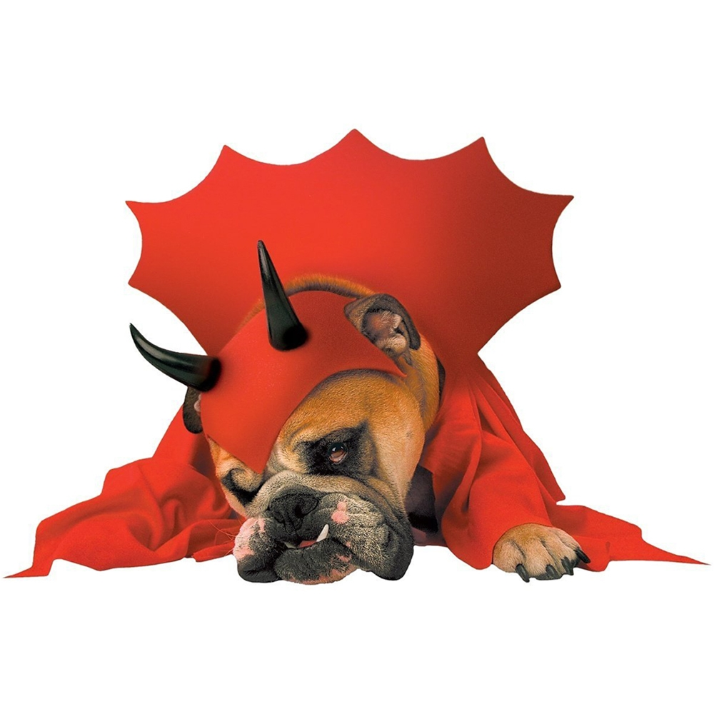 Zelda Devil Pet Costume