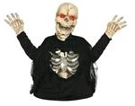 Light-Up-Skeleton-Creature