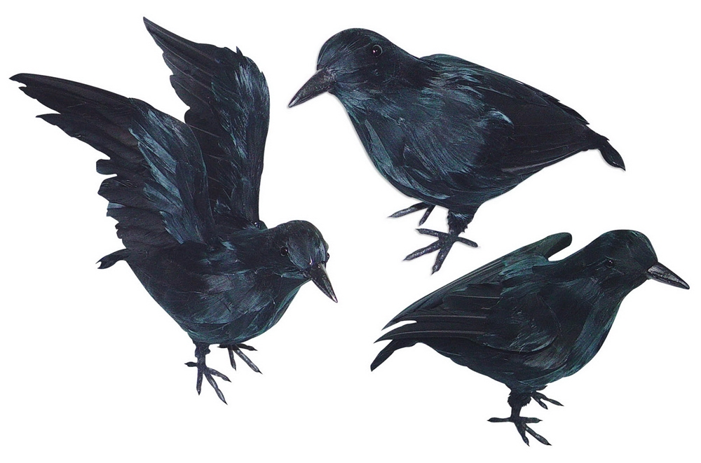 Small Realistic Black Crow