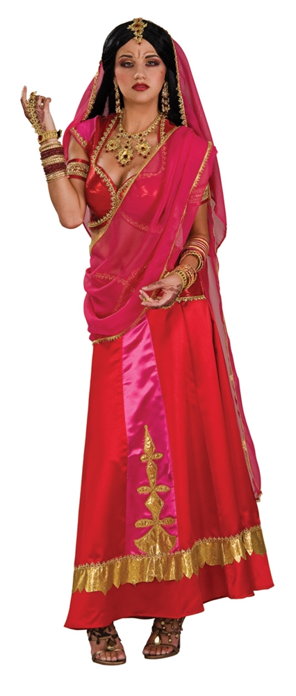 Bollywood Beauty Adult Womens Costume