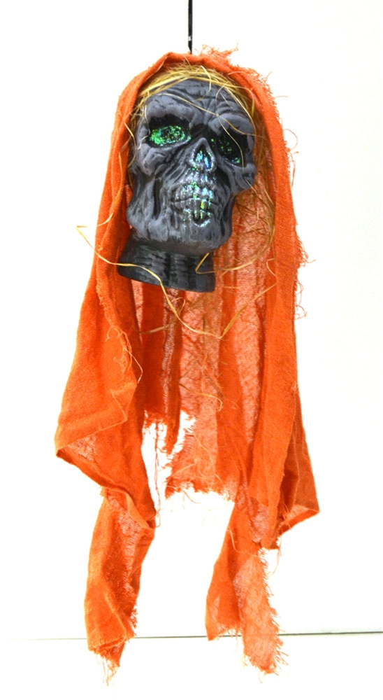 Image of Hanging Skull with Hood Prop