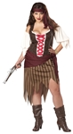 Buccaneer Beauty Adult Womens Plus Size Costume