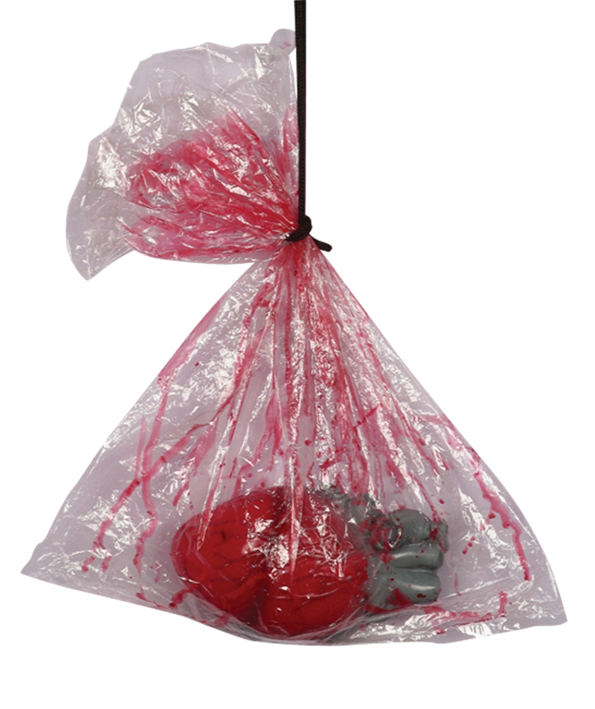 Image of Bagged Severed Heart
