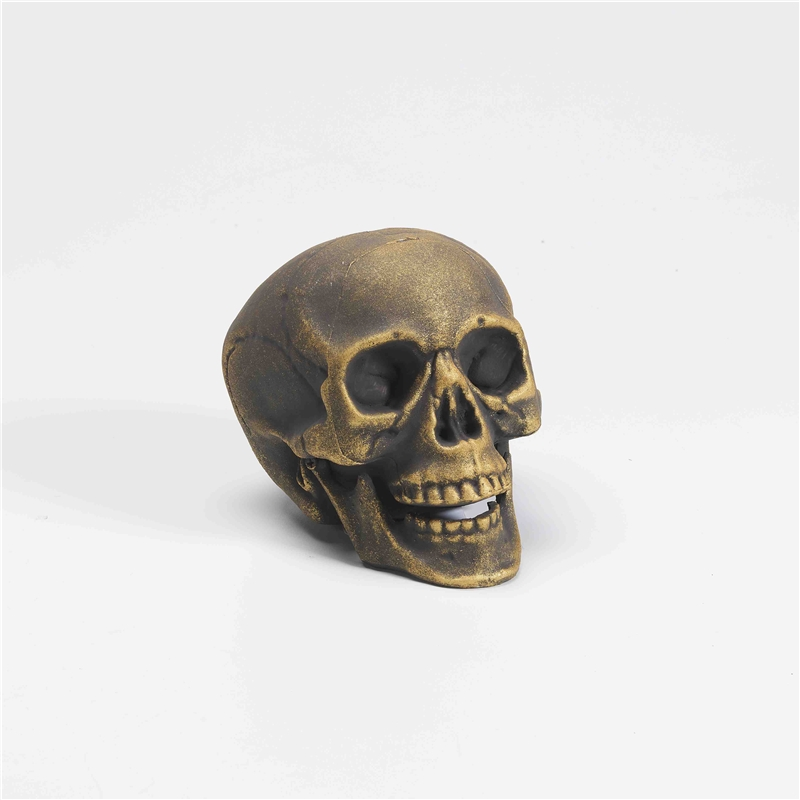 Skull Prop