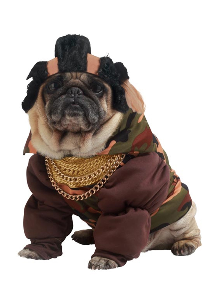 Pity The Fool Pet Costume