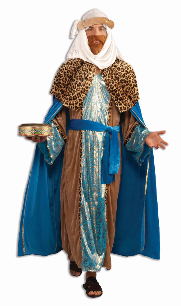 Wiseman Sapphire Adult Mens Costume