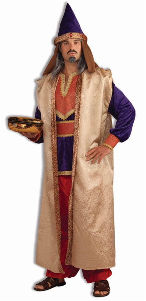 Wiseman Garnet Adult Mens Costume