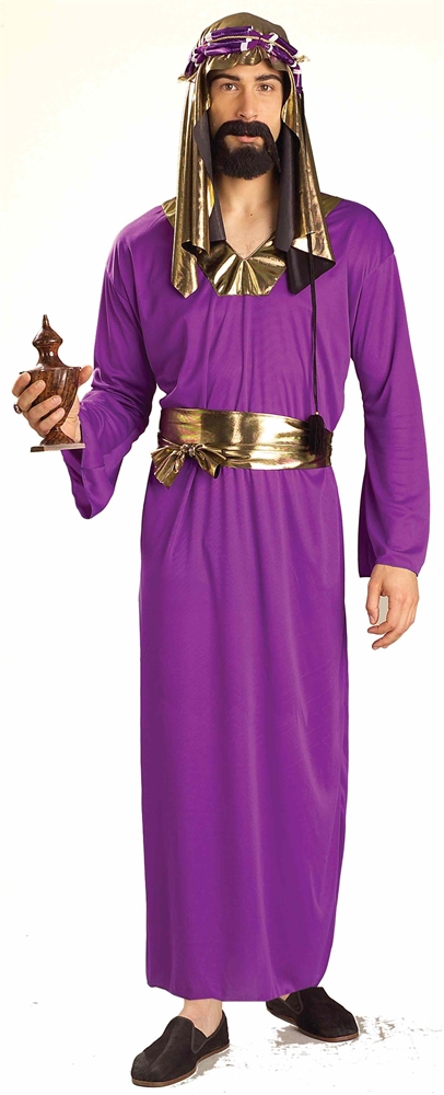 Purple Wiseman Adult Mens Costume