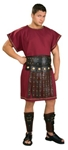 Burgundy Tunic Adult Men Costume