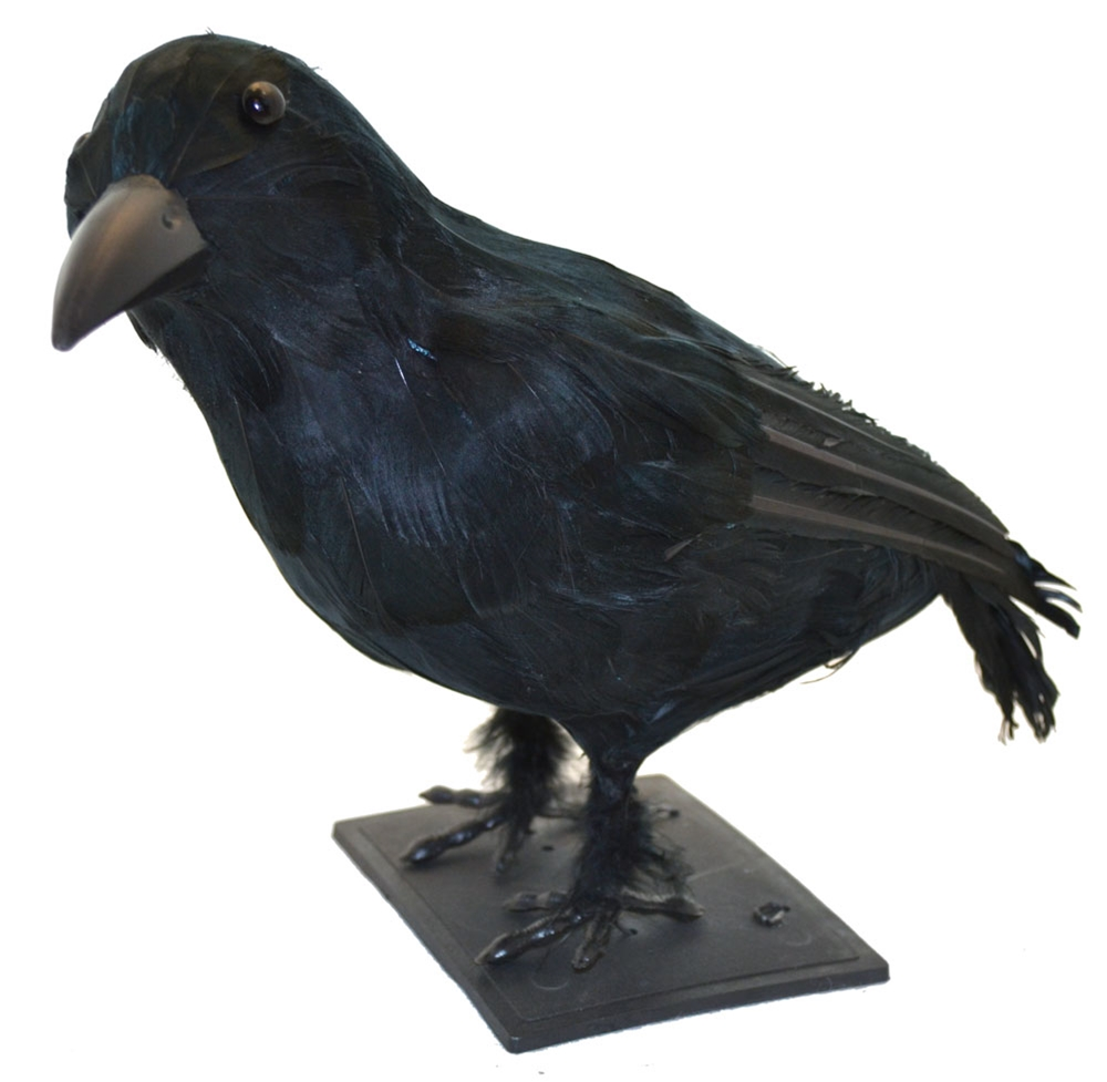 Realistic Sitting Crow Prop