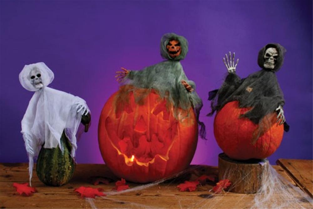 Pumpkin Hugger