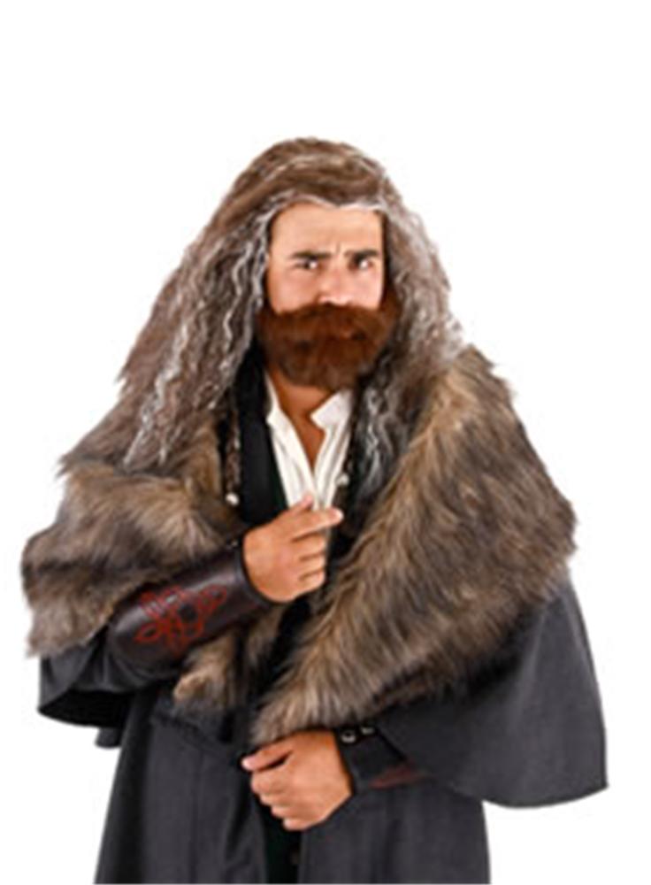 Hobbit Thorin Wig And Beard Set