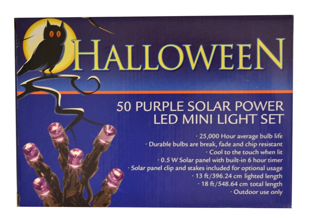 Image of Solar Powered Purple LED Mini Lights 50ct