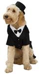 Dapper-Tux-Pet-Costume