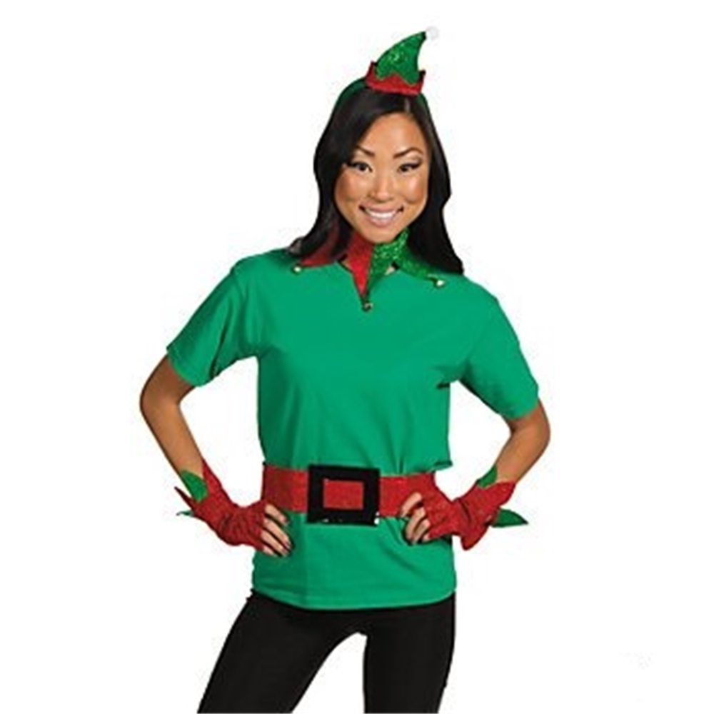 Satin Glittering Elf Adult Costume Kit