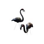 Zombie-Flamingos