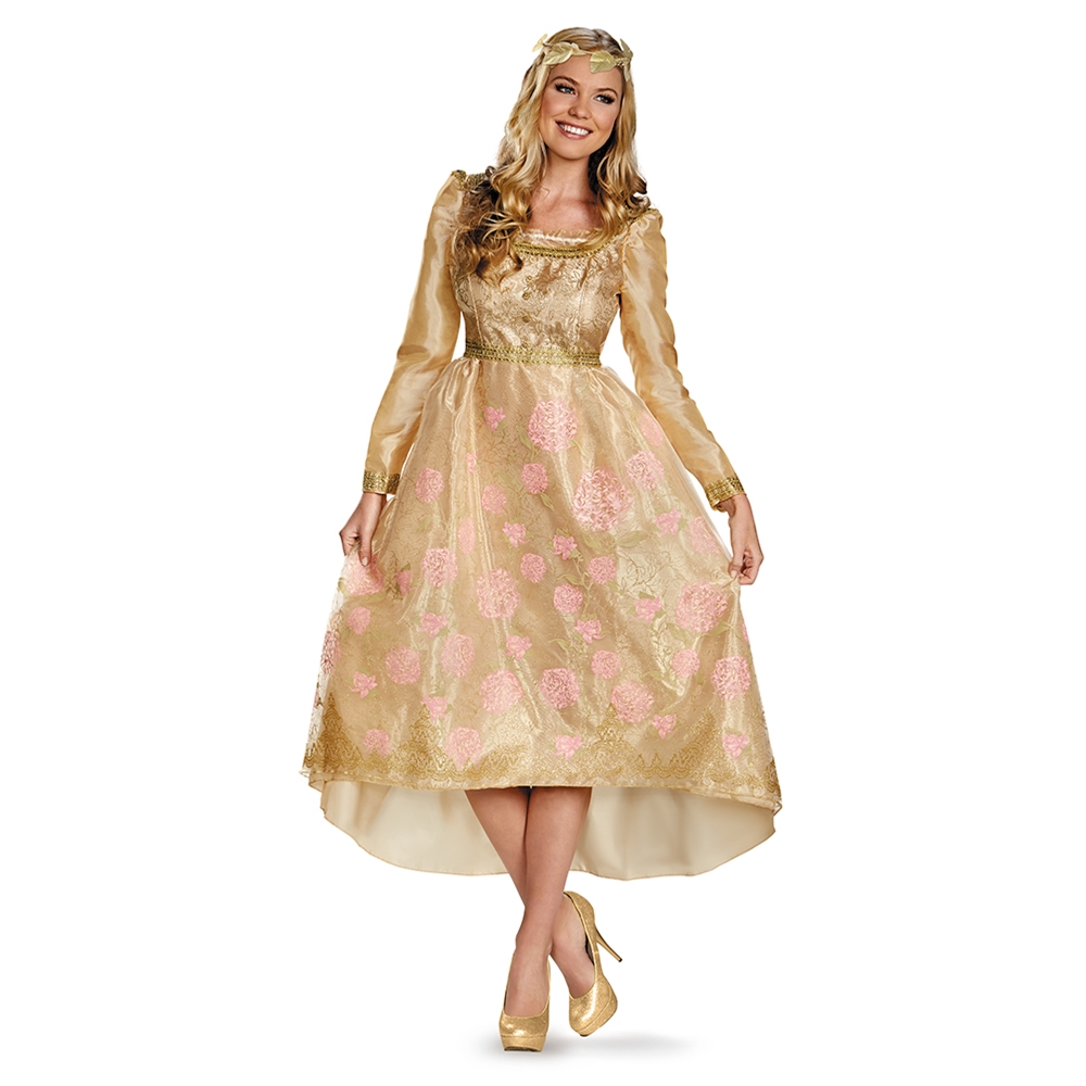 Aurora Coronation Deluxe Gown Adult Womens Costume