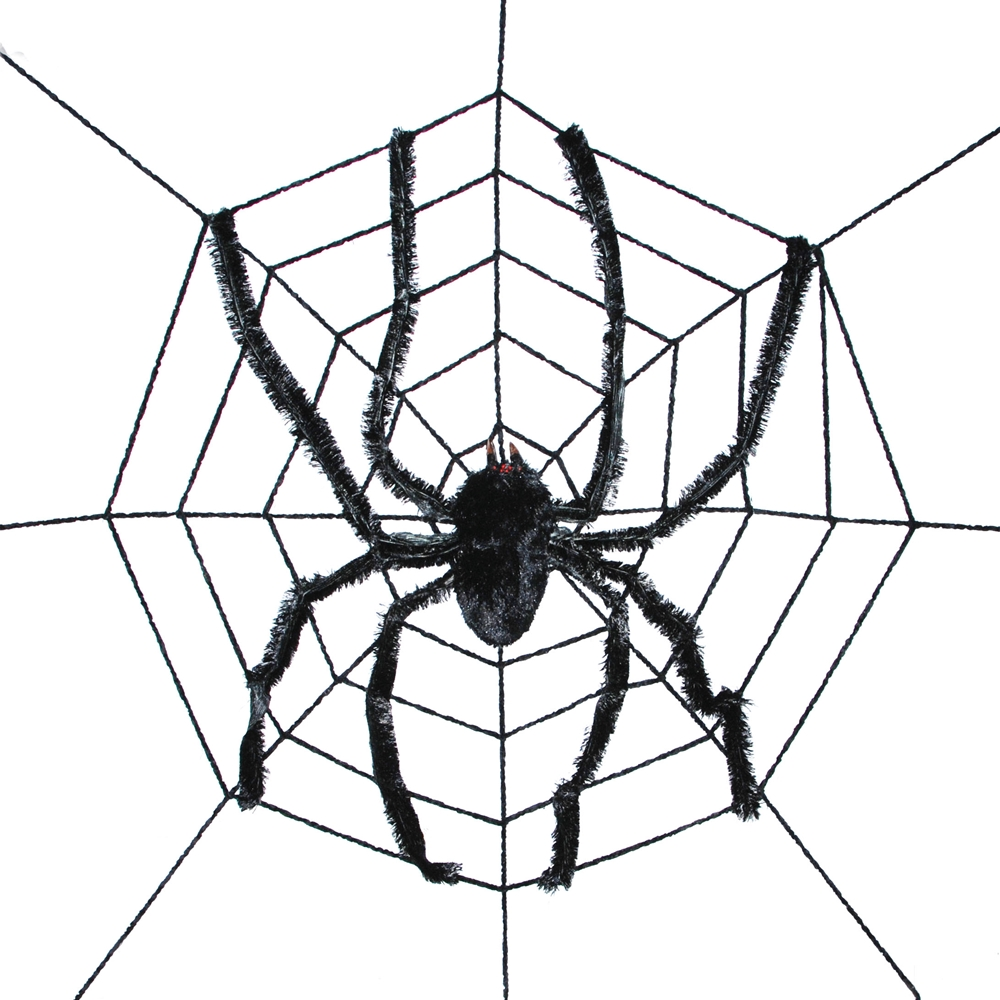 Spiderweb with Giant Spider
