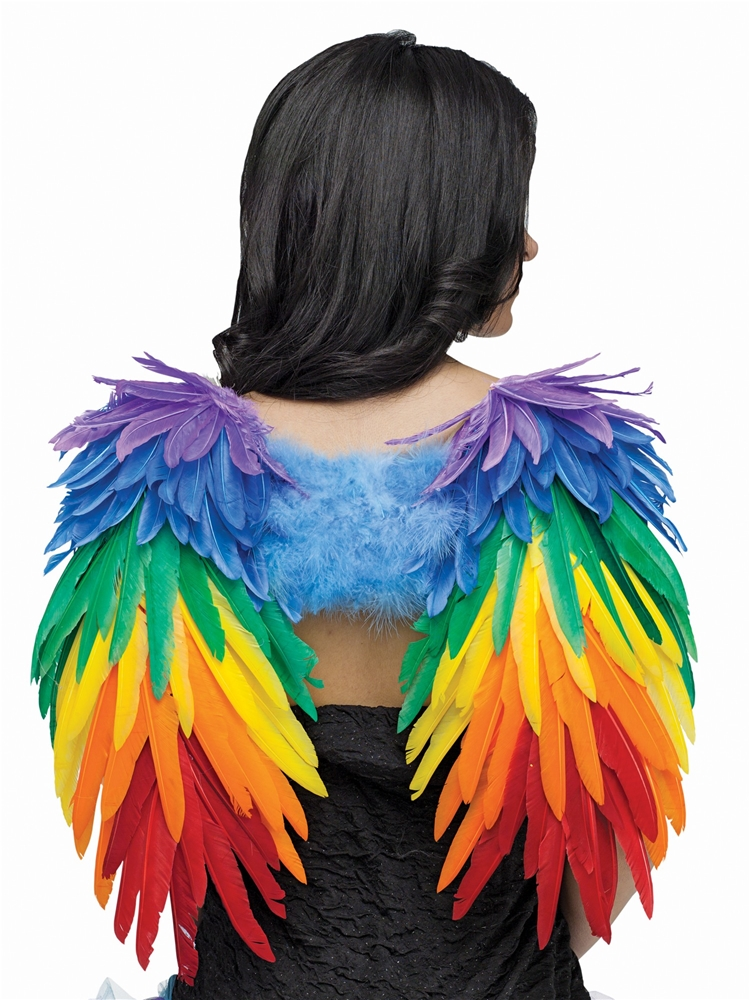 Rainbow Angel Feather Wings