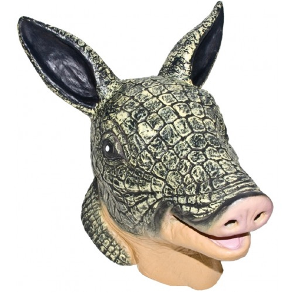 Image of Armadillo Mask