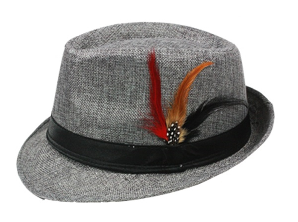 Image of Fedora with Feather (More Colors)