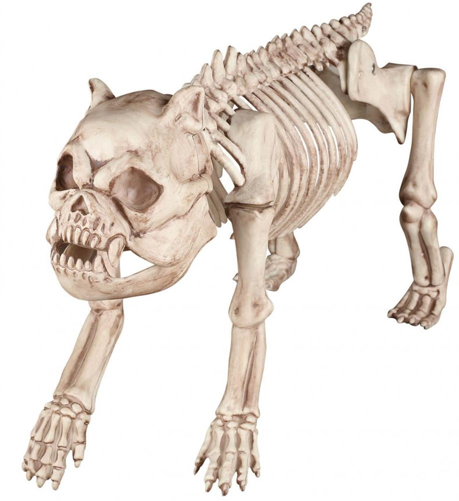 Bones the Dog Skeleton Prop