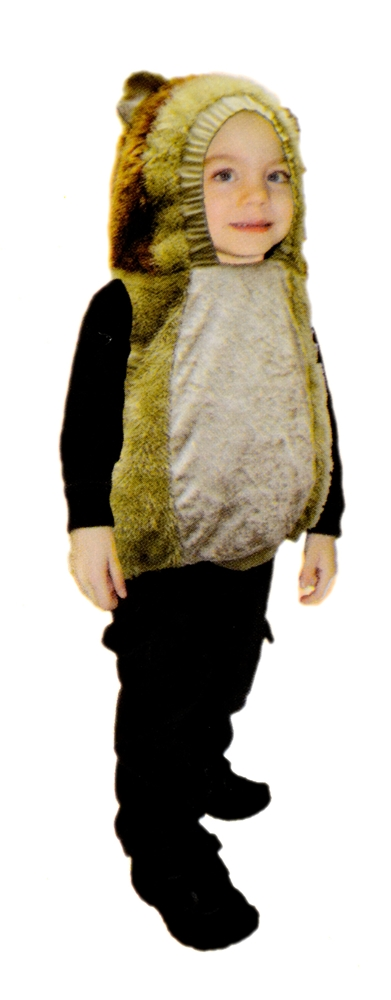 Roaring Lion Toddler Costume