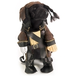 Pirate-King-Pet-Costume