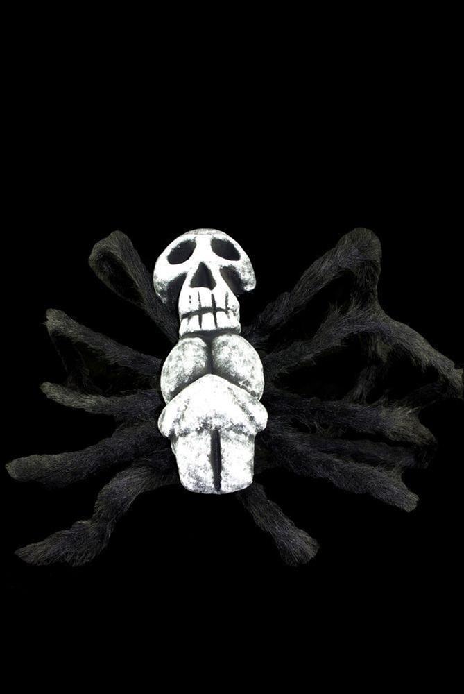 Hairy Skull Spider 30in