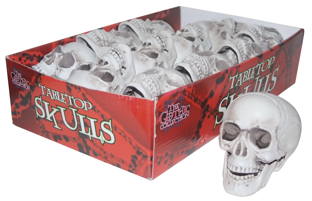 Tabletop Skull (More Styles)