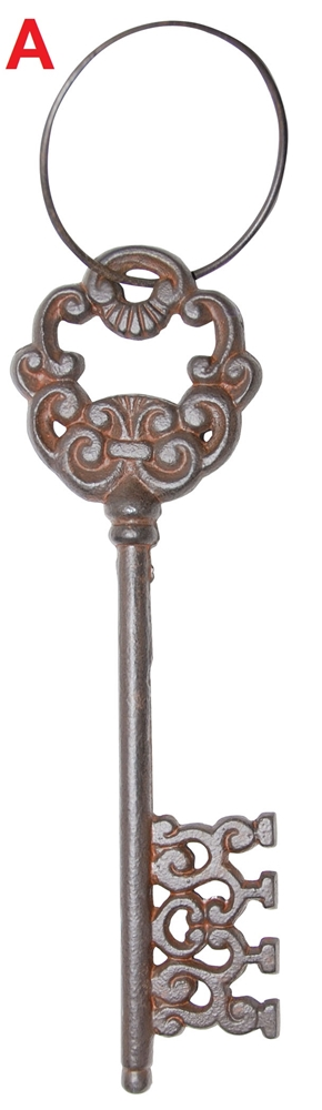 Large Skeleton Key with Ring (More Styles)