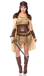 Celtic-Warrior-Goddess-Adult-Womens-Costume