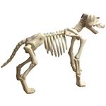 Large-Skeleton-Dog-Prop