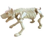 Small-Skeleton-Dog-Prop