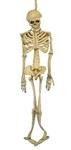 Full-Body-Latex-Skeleton-Prop-5ft