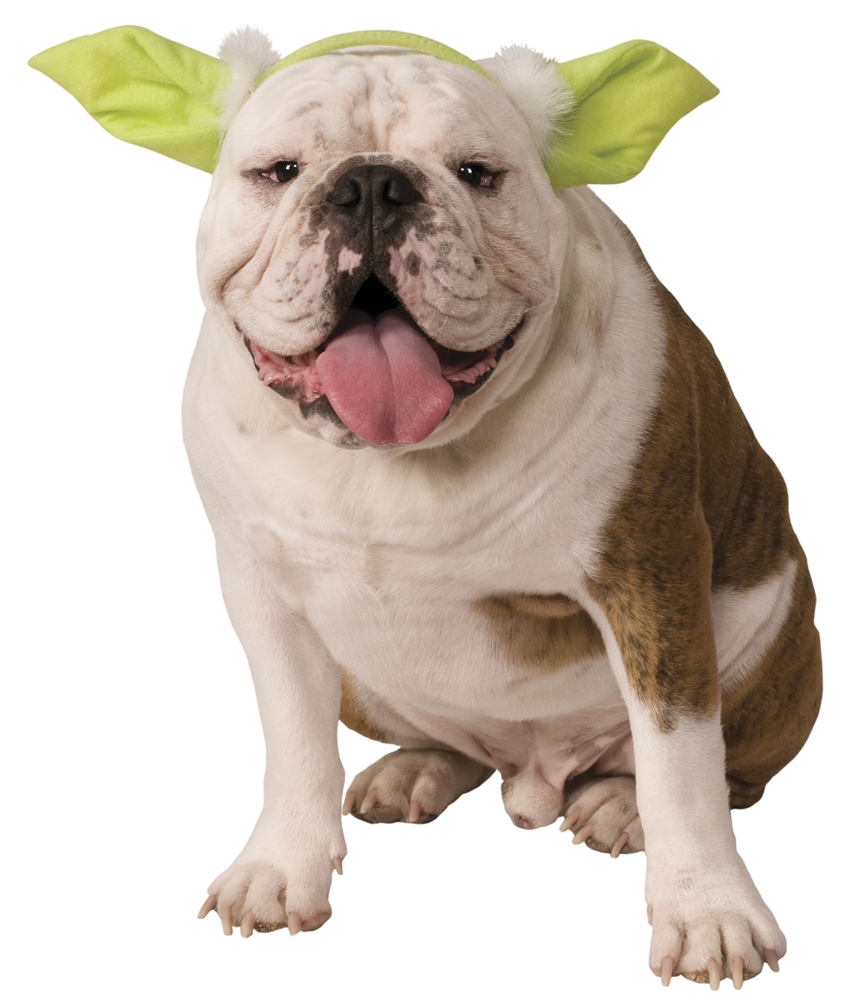 Star Wars Yoda Ears Dog Headband