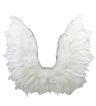 White-Wings-with-Lace-17in