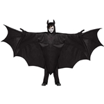 Wicked-Winged-Bat-Child-Costume