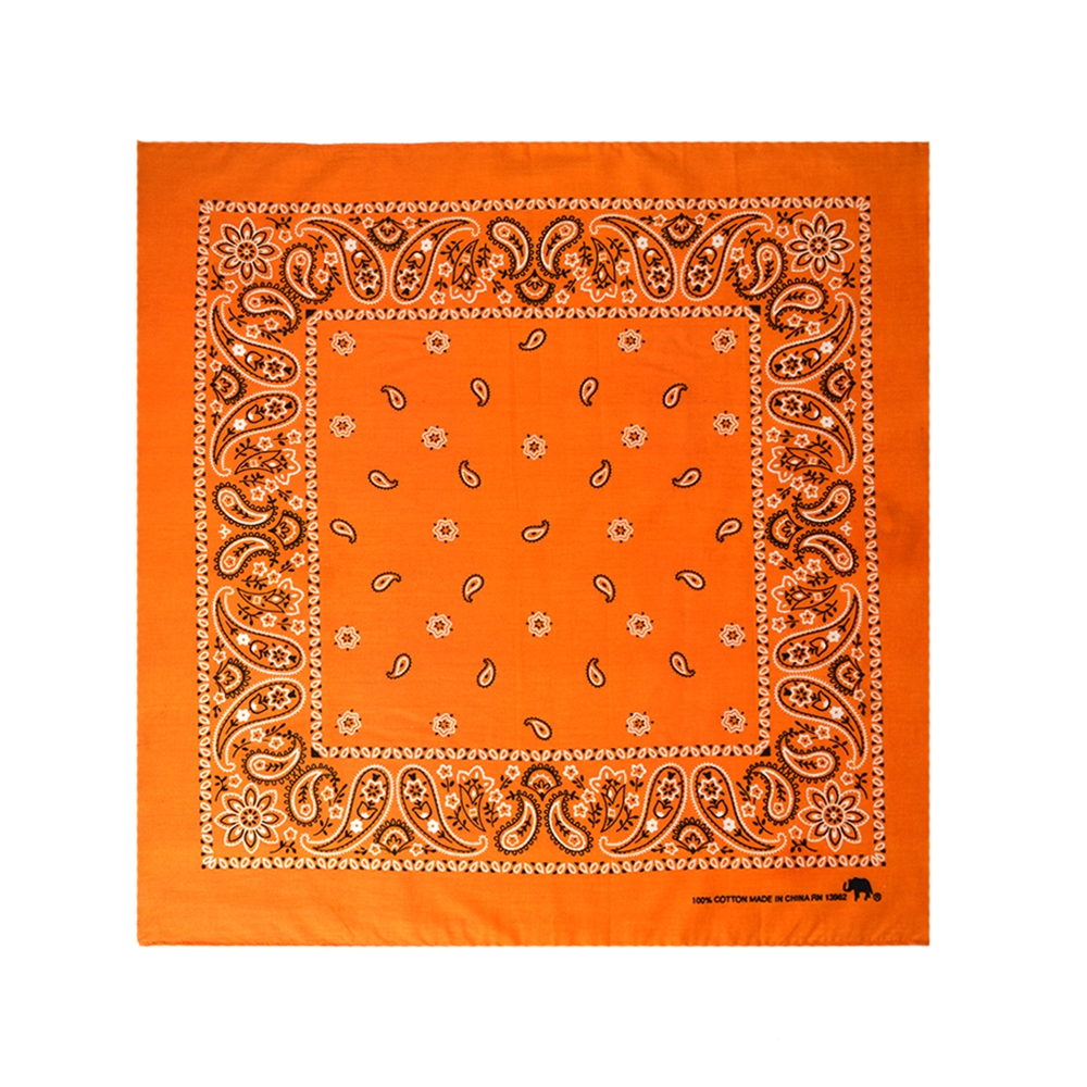 Orange Halloween Bandana
