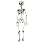 Realistic-Plastic-Skeleton-30in