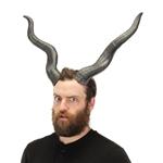Antelope-Horns