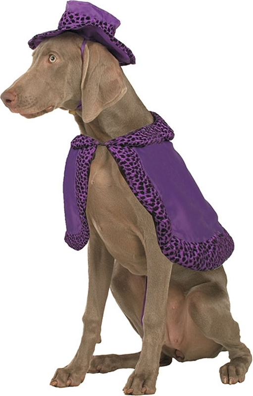 Big Daddy Purple Pet Costume