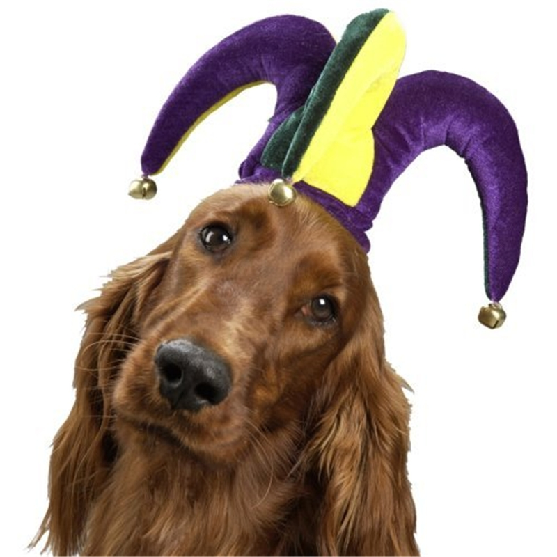 Jolly Jester Hat Pet Costume