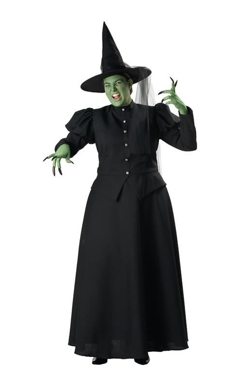 Wicked Witch Adult Womens Plus Size Costume