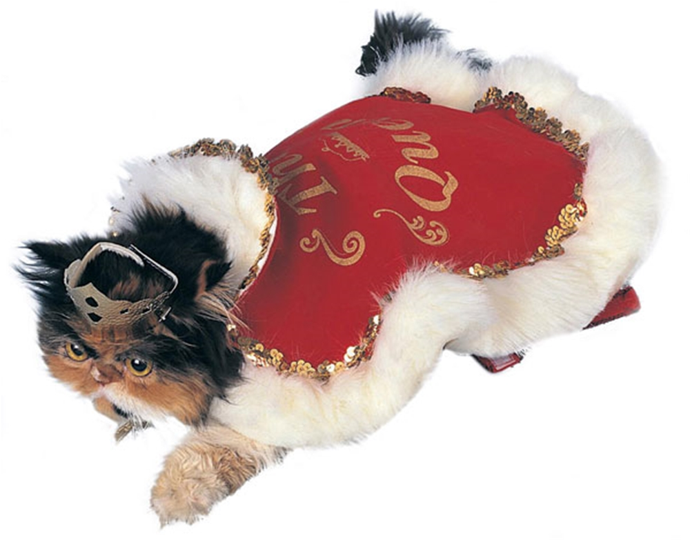 Queen Cat & Dog Pet Costume by Rubies