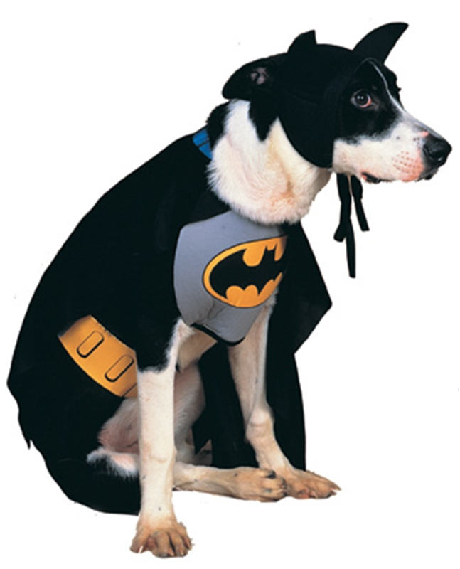 Batman Dog Costume (Dog Batman)