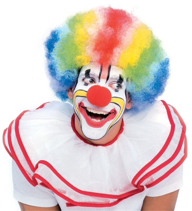 Clown Multi Color Deluxe Wig